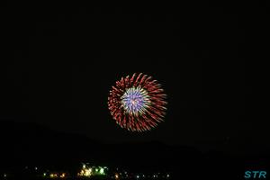 対岸の花火を見る