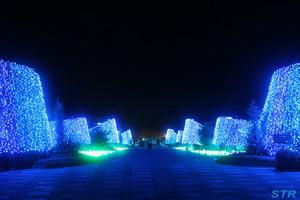 まんのう公園 サマーナイトフェスティバル2009