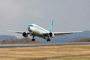 モヒカンジェット 高松空港飛来