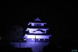 世界糖尿病デーで丸亀城ライトアップ