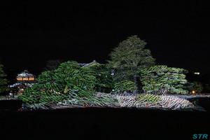 冬のクリスマス絵巻 in 栗林公園