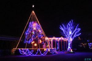 高松市国分寺町にあるツリーイルミネーション2011