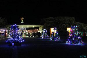 まんのう公園ウィンターファンタジー2011