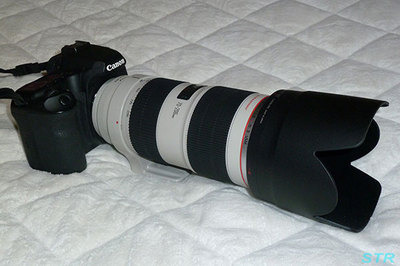 Canon EF70-200mm F2.8L IS II USM 購入
