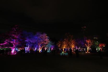 徳島LEDアートフェスティバル2016