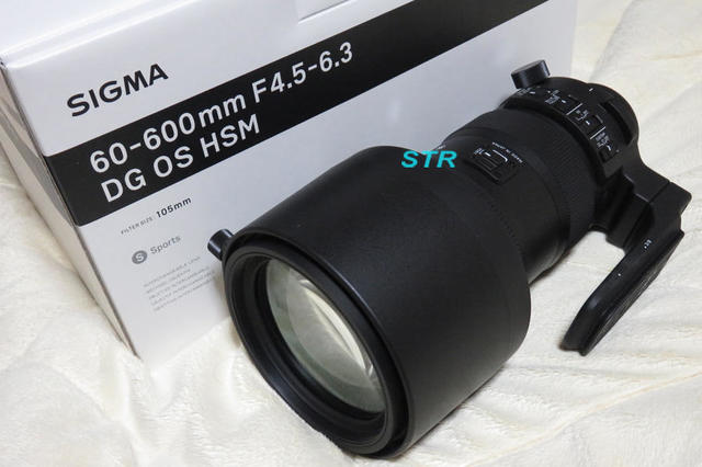 SIGMA 60-600mm F4.5-6.3 DG OS HSM Sports 購入